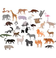 set cute cartoon animals african animals vector image