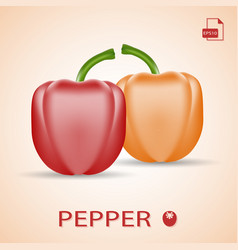Set of two fresh sweet peppers red and orange vector