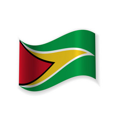 the flag of guyana vector image