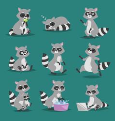 raccoon cartoon set of fun vector image