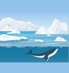 beautiful arctic landscape vector image