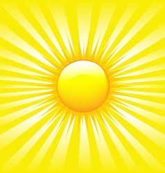 bright sunburst vector image
