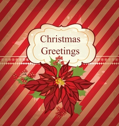 Christmas greeting card with poinsettia vector image