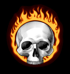 engraved human skull full face in a ring fire vector image