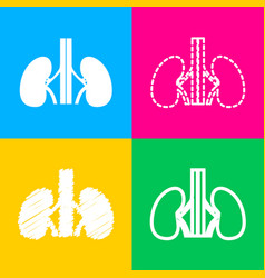 human kiddneys sign four styles of icon on four vector image