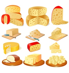 set of different types of cheese vector image vector image