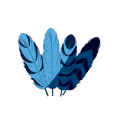 Blue differents feather free spirit rustic vector