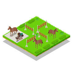 Gallop concept banner isometric style vector