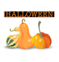 halloween pumpkin set different shapes and sizes vector image