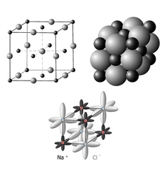 Ionic crystals the structure sodium chloride vector