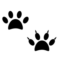 trace of a dog on white vector image