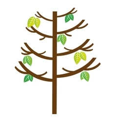 tree plant natural isolated icon vector image