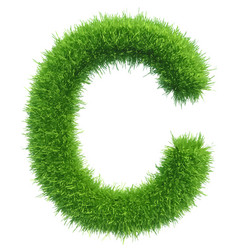 capital letter c from grass on white vector image