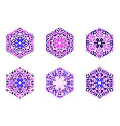 Geometrical abstract petal ornament hexagon vector