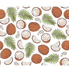 hand drawn seamless pattern with coconuts and vector image