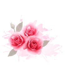 Holiday gift cardl with three pink roses vector