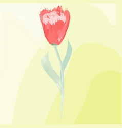 imitation of watercolor painting red tulip vector image