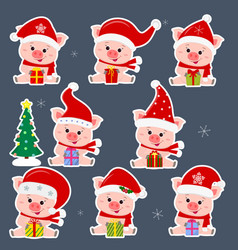 Set of eight stickers of cute pigs in different vector