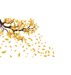 Yellow autumn branch an oak with acorns flying vector