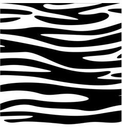 Zebra skin animal texture black white wallpaper vector