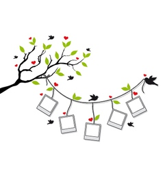 tree with photo frames and birds vector image vector image
