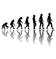 Silhouette man evolution vector image