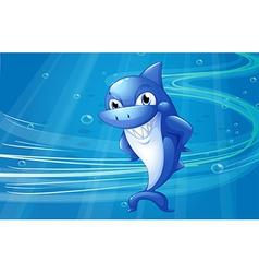 A blue shark under the sea vector