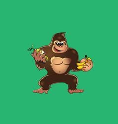 gorilla holding fruit vector image