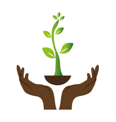 Green background with hands and plant vector