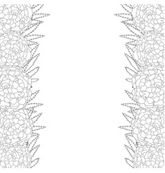 marigold flower - tagetes outline border vector image