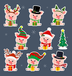 set of eight stickers of cute pigs in different vector image