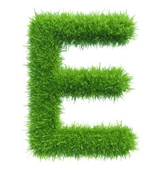 capital letter e from grass on white vector image vector image