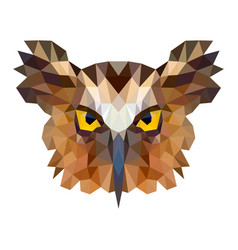 owl portrait abstract low poly design vector image vector image