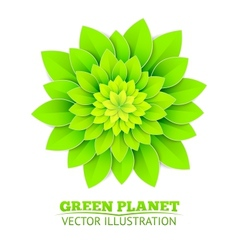 Background with green flower vector