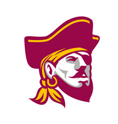 Buccaneer wearing tricorne hat icon vector