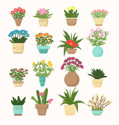 colorful set flowers and vector image