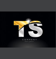Combination letter ts t s alphabet with gold vector