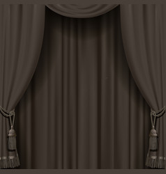curtain in dark vintage colors vector image
