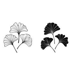 Monochrome leaves ginko biloba vector