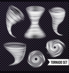 monochrome storm realistic collection vector image