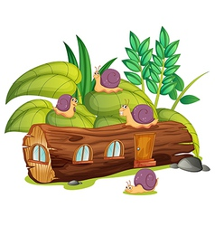 Snails and a wood house vector image