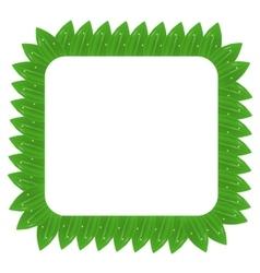 Square Green Leaves Frame vector image