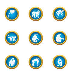 tamarin icons set flat style vector image