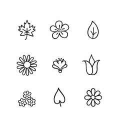 floral icon set flowers and leaves nature line vector image vector image