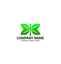 leaf butterfly logo vector image