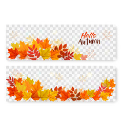 autumn sale banners with colorful leaves layered vector image