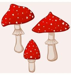 Cartoon amanita muscaria mushrooms vector