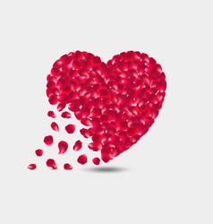 heart petals red roses crumbling vector image