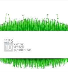 Nature background with green grass 02 vector