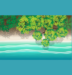 top view landscape beach in summer vector image